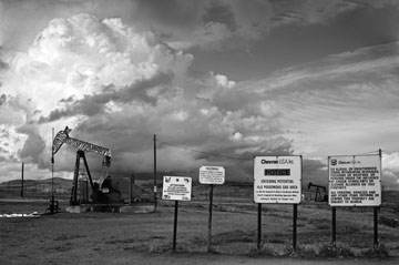Zebra Oil Well with Signs